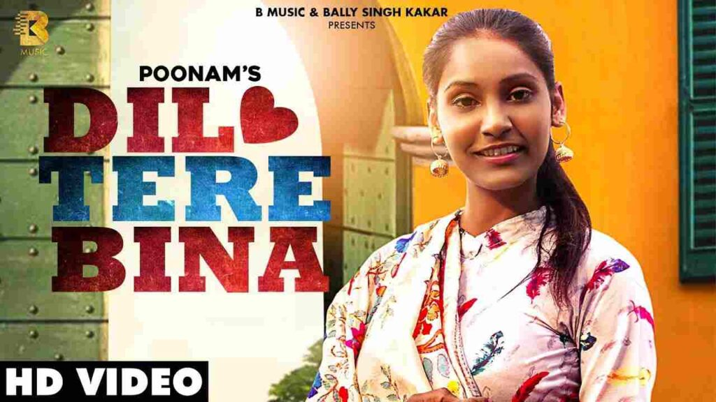 Dil Tere Bina Lyrics